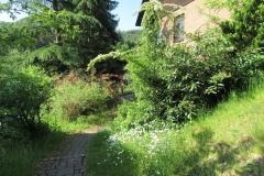 wohnen-nibelungenwald-mossautal_8