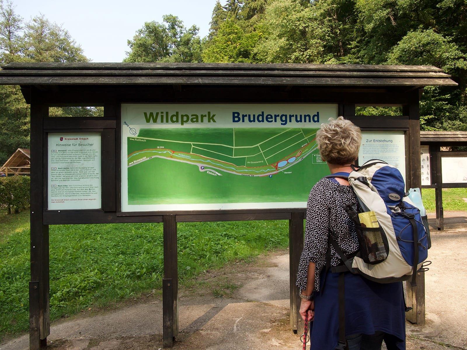 wildpark-brundergrund_7